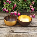 Coconut Bowl Large with Gold Water Based Lacquer Inside